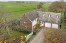 Little Gable Detached property for sale