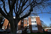 Studio flat to rent in Rosehill Court, Woolton...