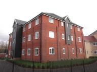 new Apartment to rent in Needham Maltings...