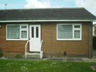 Bungalow to rent in Alverton Green...