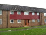 Ground Flat to rent in Morpeth Avenue...