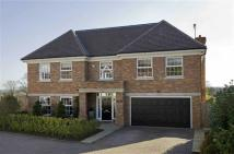 Detached property for sale in Knowle Wood Road...