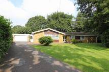 Detached Bungalow in Kingswood