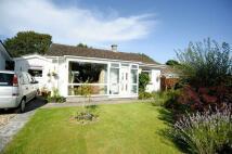 Great Fellingfield Bungalow for sale