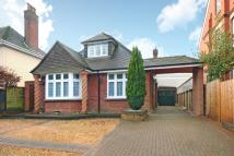 Detached Bungalow in Shinfield, Reading