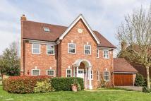 6 bed Detached house in Caversham Heights...