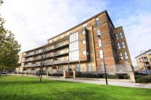 new Flat for sale in Aster Court...