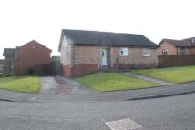 3 bedroom Detached Bungalow to rent in Seafield Crescent...