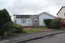 3 bed Detached Bungalow in Avonhead Avenue...