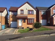 Detached house to rent in Brady Crescent...