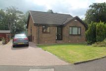 Detached Bungalow to rent in Green Bank Road...