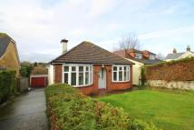 Detached Bungalow for sale in Wrotham Road...