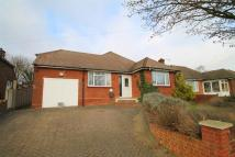 3 bed Detached Bungalow in Tennyson Walk...
