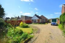 Detached Bungalow for sale in Ashley Green Road...