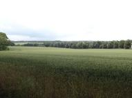 Farm Land in ADISHAM ROAD, Barham, CT4