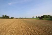 Land in Land at Loose Farm for sale