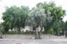 3 bed Detached home in Kaimakli, Nicosia