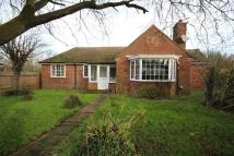 Detached Bungalow to rent in Newmarket Road...