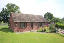 Detached Bungalow for sale in Walsham Road...