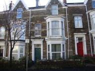 1 bedroom house in St Albans Road, Brynmill...
