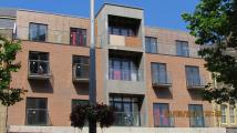 Apartment in Princess Lofts...