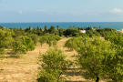 Land in Carvoeiro for sale