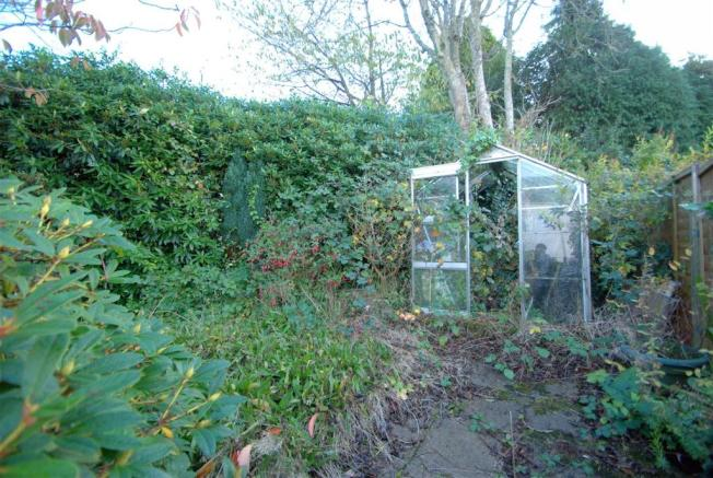 Garden B.NEF.jpg