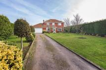 Detached house for sale in Magnolia Lodge Benington...