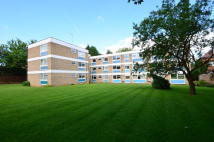 2 bed Apartment to rent in Fairacre Court...