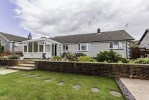 4 bedroom Detached Bungalow for sale in St Cyriac, Luxulyan