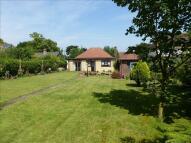 Ickleton Road Detached Bungalow for sale