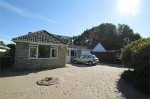 Detached house to rent in Kimberley Road, Poole...