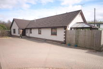 5 bed Bungalow in Bellshill Road...