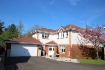 4 bedroom Detached home for sale in Love Drive, Bellshill...