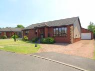 Bungalow in Curling Knowe...