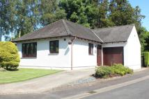 Detached Bungalow in 6 Priory Gardens...