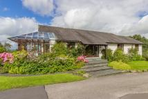 Detached Bungalow for sale in Stonethwaite...
