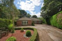 The Sycamores Detached Bungalow for sale