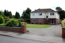 Detached house in Downham...