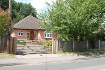 2 bed Detached Bungalow for sale in Danbury, CM3