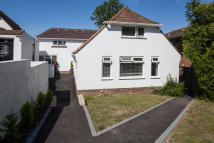 Detached house in The Ridgway, Sussex BN2