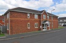 2 bed Apartment in Ambrose Court...