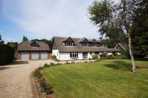 Detached home for sale in Liphook, Hampshire