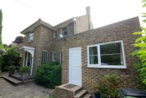 Detached house to rent in Netherfield Road, Battle