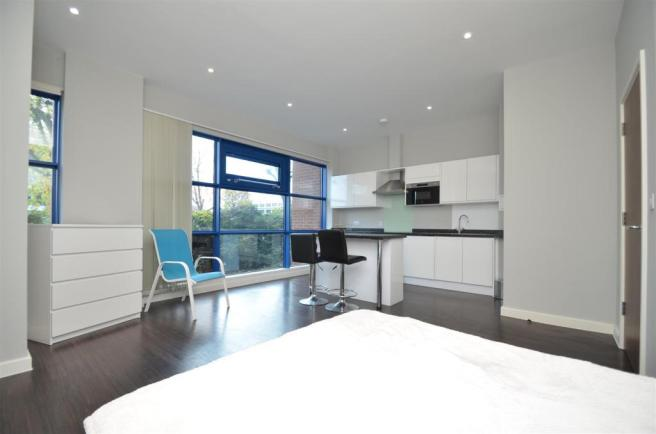 Studio Room/Kitchen Area