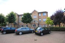 Ringwood Gardens Ground Flat to rent