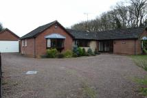 4 bed Detached Bungalow to rent in Carrs Hill Close...