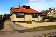 4 bed Detached Bungalow for sale in Long Lane, Bradwell...
