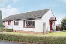 Semi-Detached Bungalow for sale in Alder Grove, Scone...