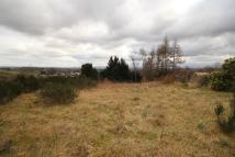 Plot for sale in Off Perth Road, Crieff...